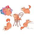 Set of Cartoon Cute Cats vector image