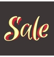 Sale Inscription Calligraphy Lettering vector image