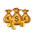 money bags with currency signs isolated vector image
