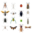 Insect icons set isolated on white vector image