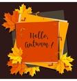 Autumn seasonal banner design Fall leaf vector image vector image
