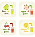 Summer holidays set with fruit juices vector image