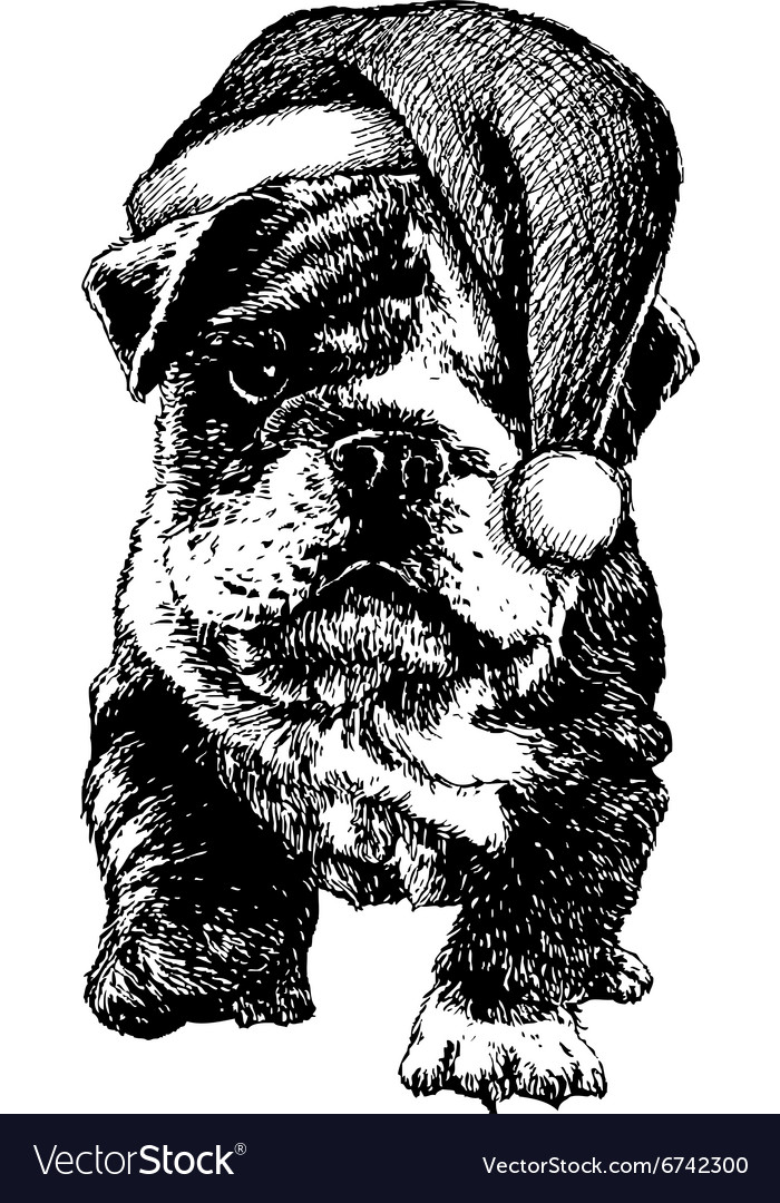 Christmas puppy bulldog vector