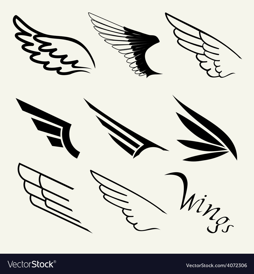 Wings set on white background vector