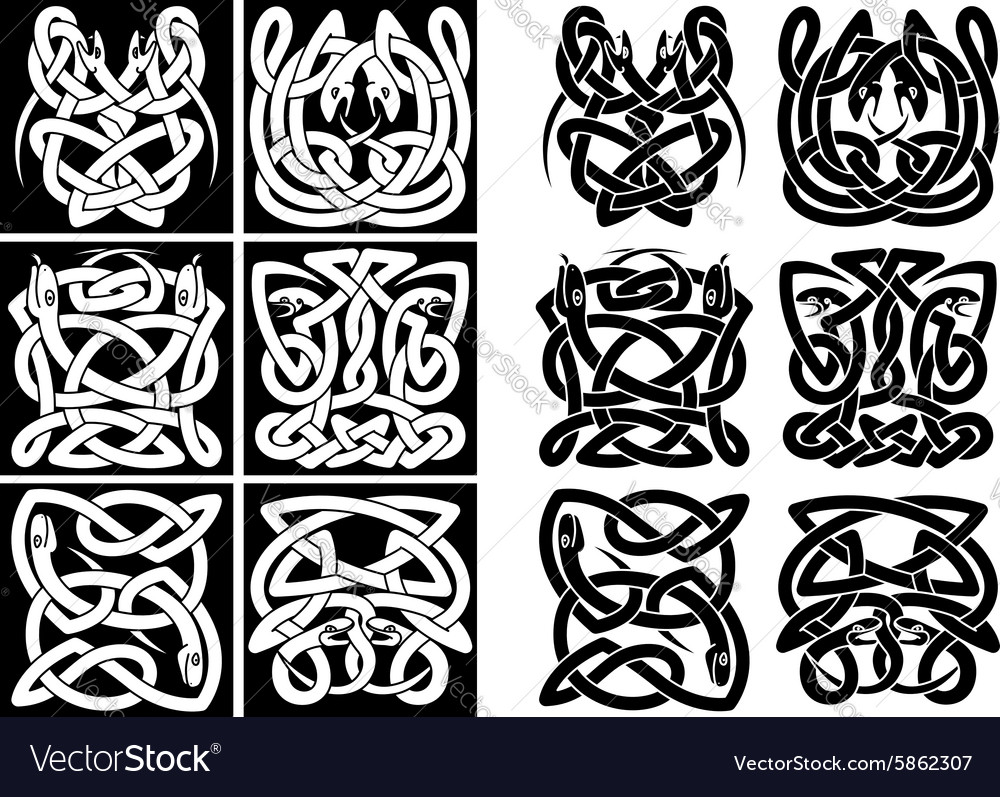 Snakes and reptiles celtic patterns vector