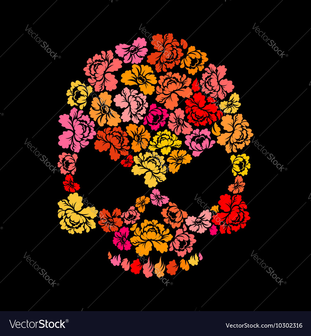 Rose skull on black background skeleton head of vector