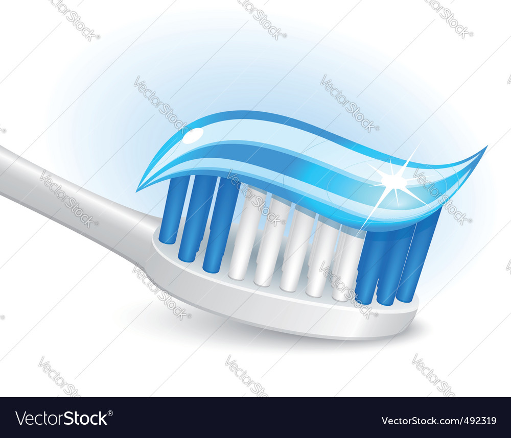 Toothbrush and gel toothpaste vector