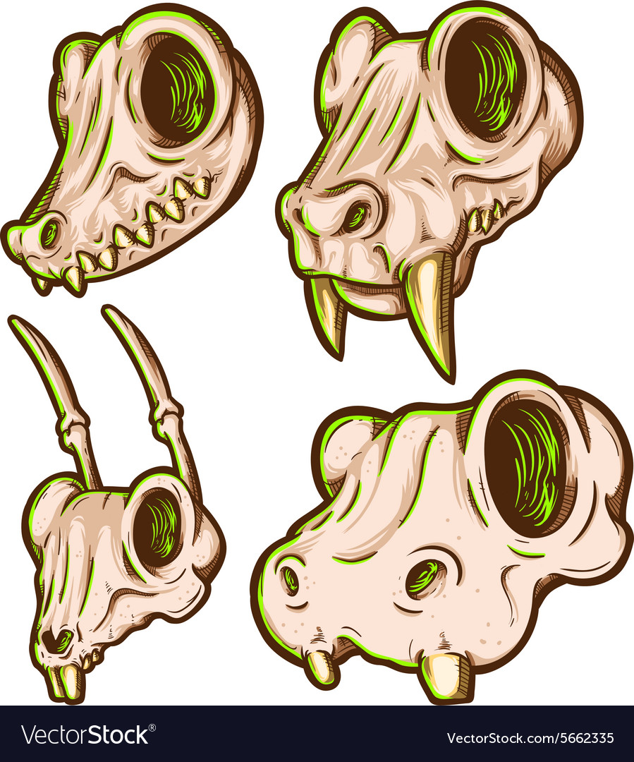 Animal skull pack vector