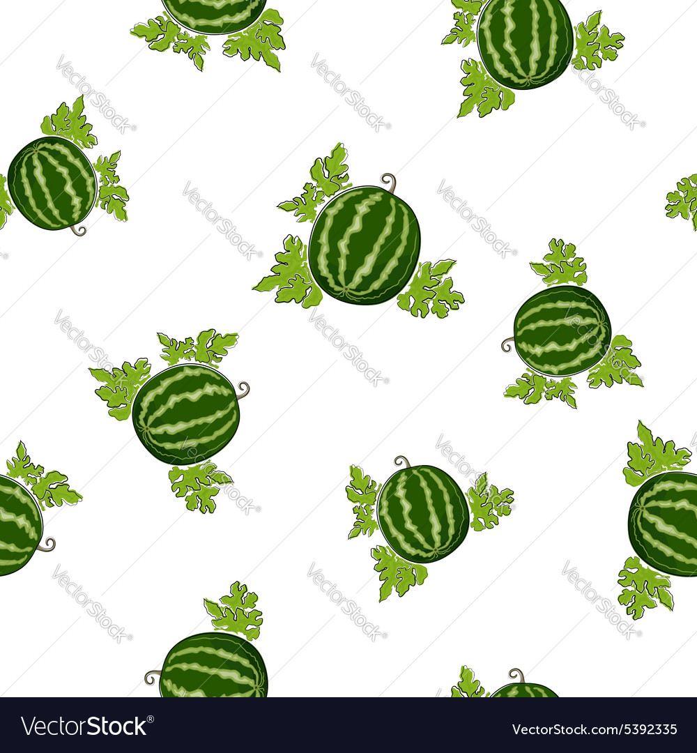 Seamless pattern of watermelon vector