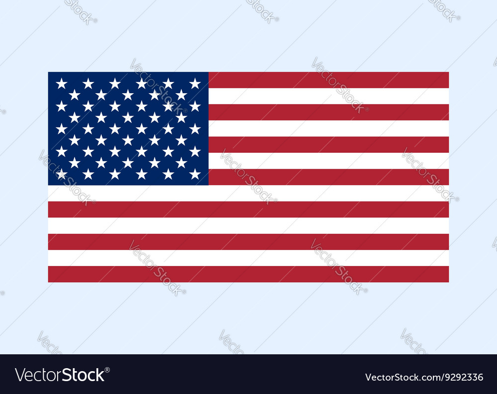 Usa flag color clean vector