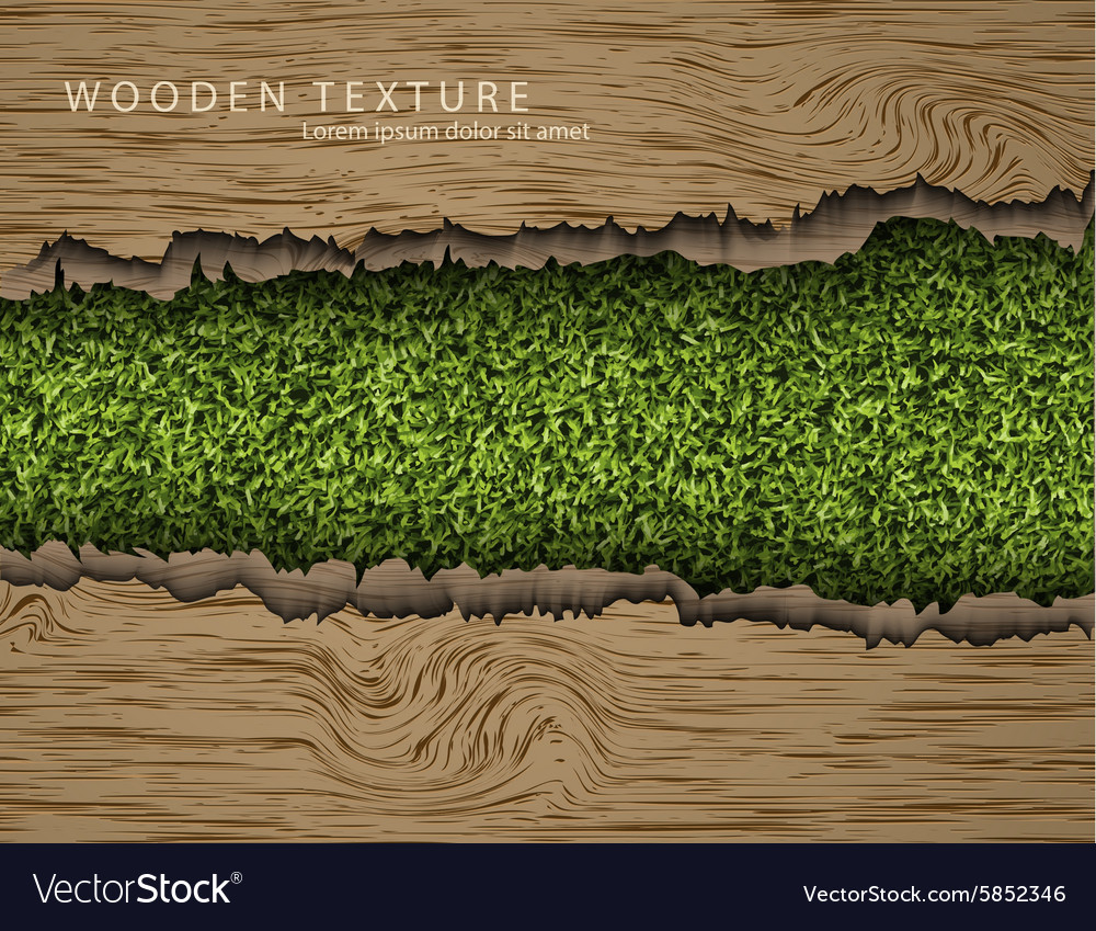 Wooden background with shadows and grass vector