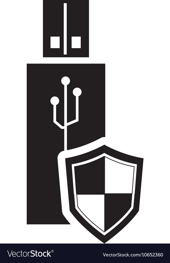 Usb drive and shield icon vector