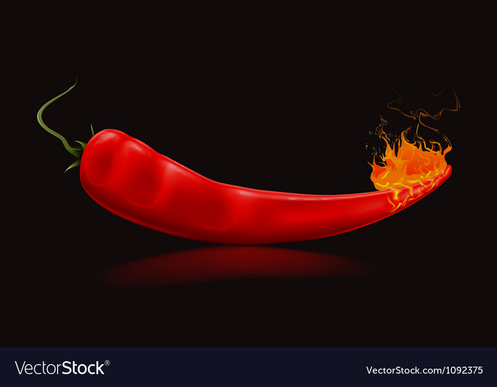 Burning pepper in black vector