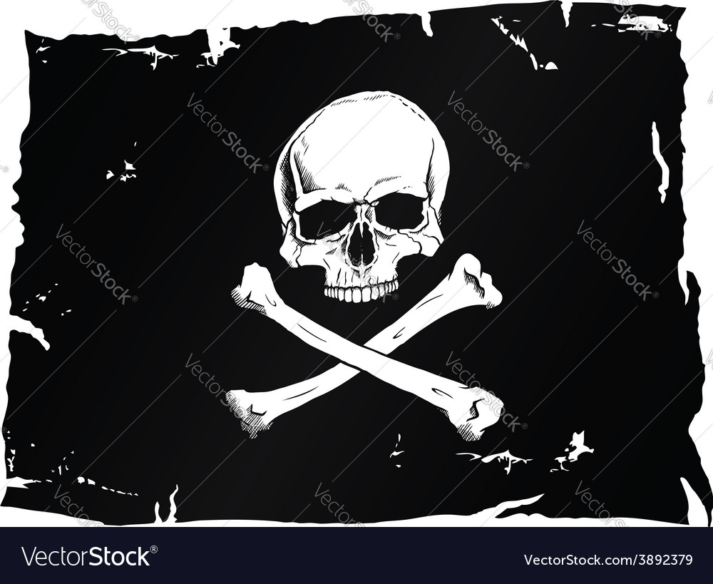 Pirate flag with skull vector