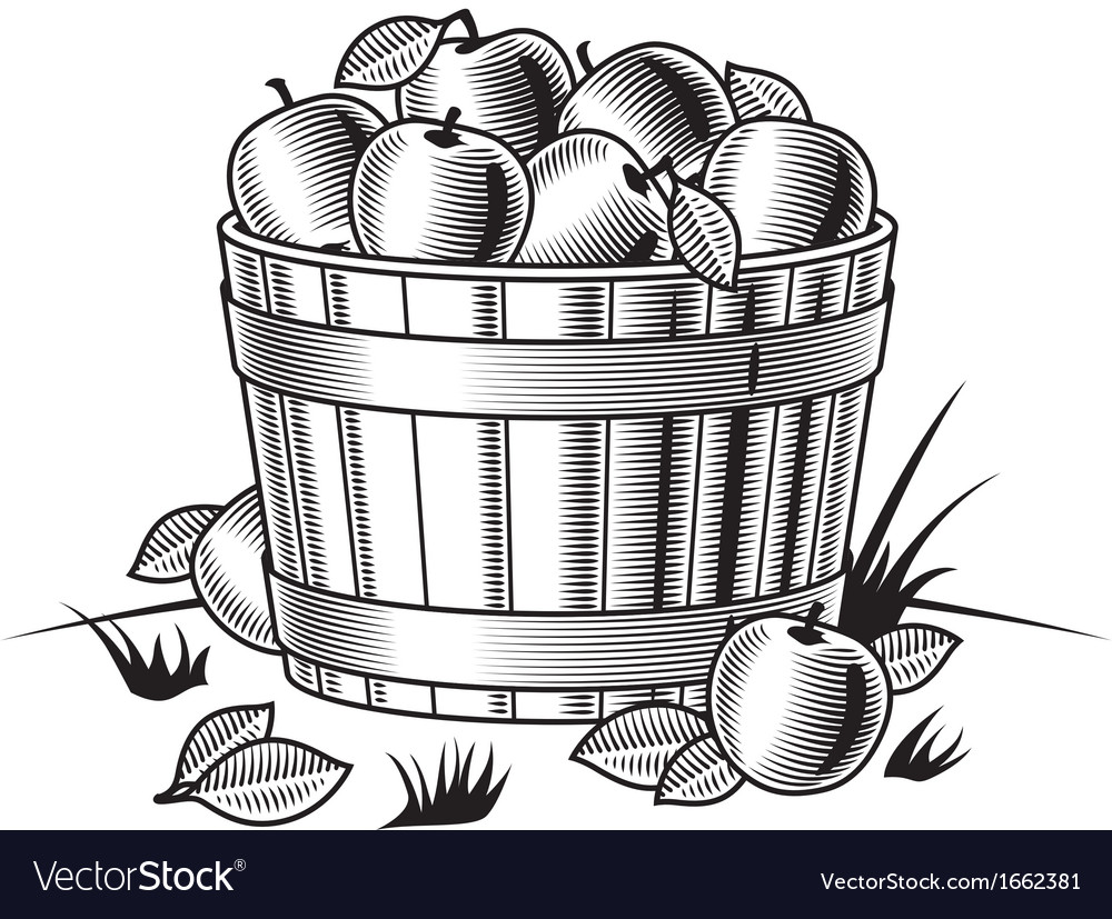Retro bushel of apples black and white vector