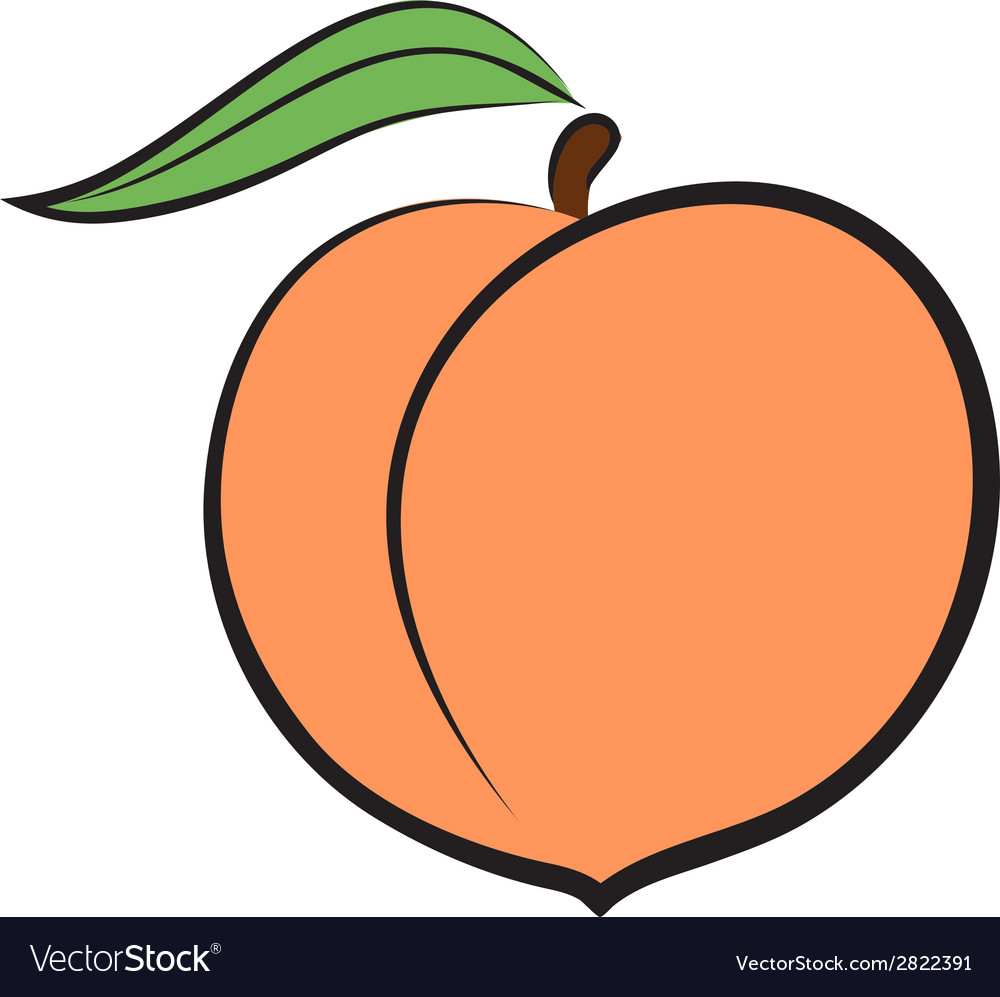 Peach icon vector