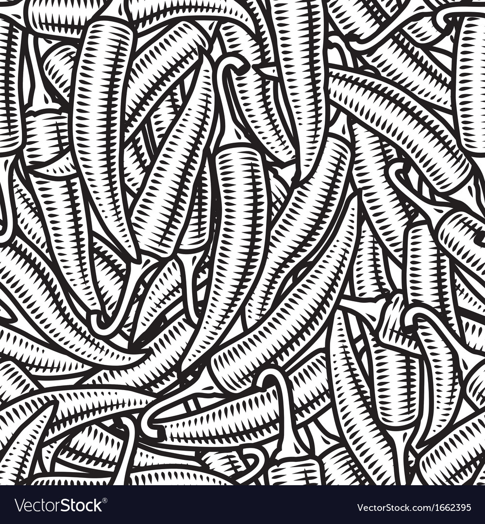 Seamless chili pepper background black and white vector