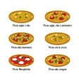 Set of sort of pizza with different ingredients vector image