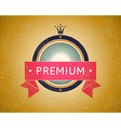 Colorful vintage premium label vector image