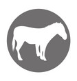 horse silhouette isolated icon vector image