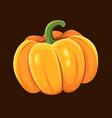 pumpkin icon vector image vector image