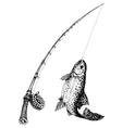 Fishing rod and fish isolated vector image vector image
