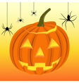 Halloween pumpkin and black spiders on the web vector image