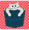 Cat in pocket vector image vector image