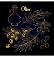 Graphic olive collection vector image