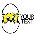 Chicken in the broken egg vector image