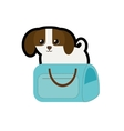 puppy little canine adorable blue pet carrier bag vector image