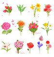 finely collection with different bouquet of lovely vector image vector image