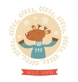 Hello winter card with cute deer boy portrait vector image vector image
