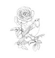 rose and little bird vintage hand drawn vector image
