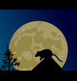 a huge moon glows the silhouette of the rat on vector image