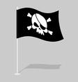 Skull and Bones Flag vector image