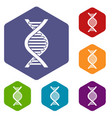 dna strand icons set vector image