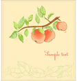 apple tree postcard vector image vector image