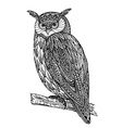 wild totem animal - Owl vector image