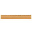 Wooden ruler vector image