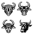 set of bull heads icons on white background vector image