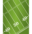 American Football Field Diagonal vector image