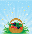Summer harvest vector image