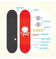Skateboard isolated parts vector image
