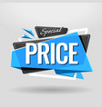 special price geometric banner vector image