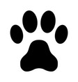 animal paw print on a white background vector image