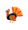 cute and funny farm hen turkey character vector image