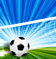 leather soccer ball vector image vector image