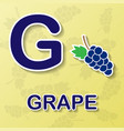grape alphabet background vector image