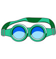 protective spectacles icon vector image